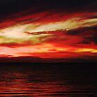 Red Swirls by Julia Harwood