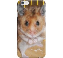 Hamster Barney iPhone Case/Skin
