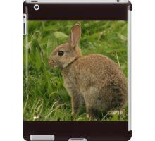 Wild Baby Rabbit iPad Case/Skin