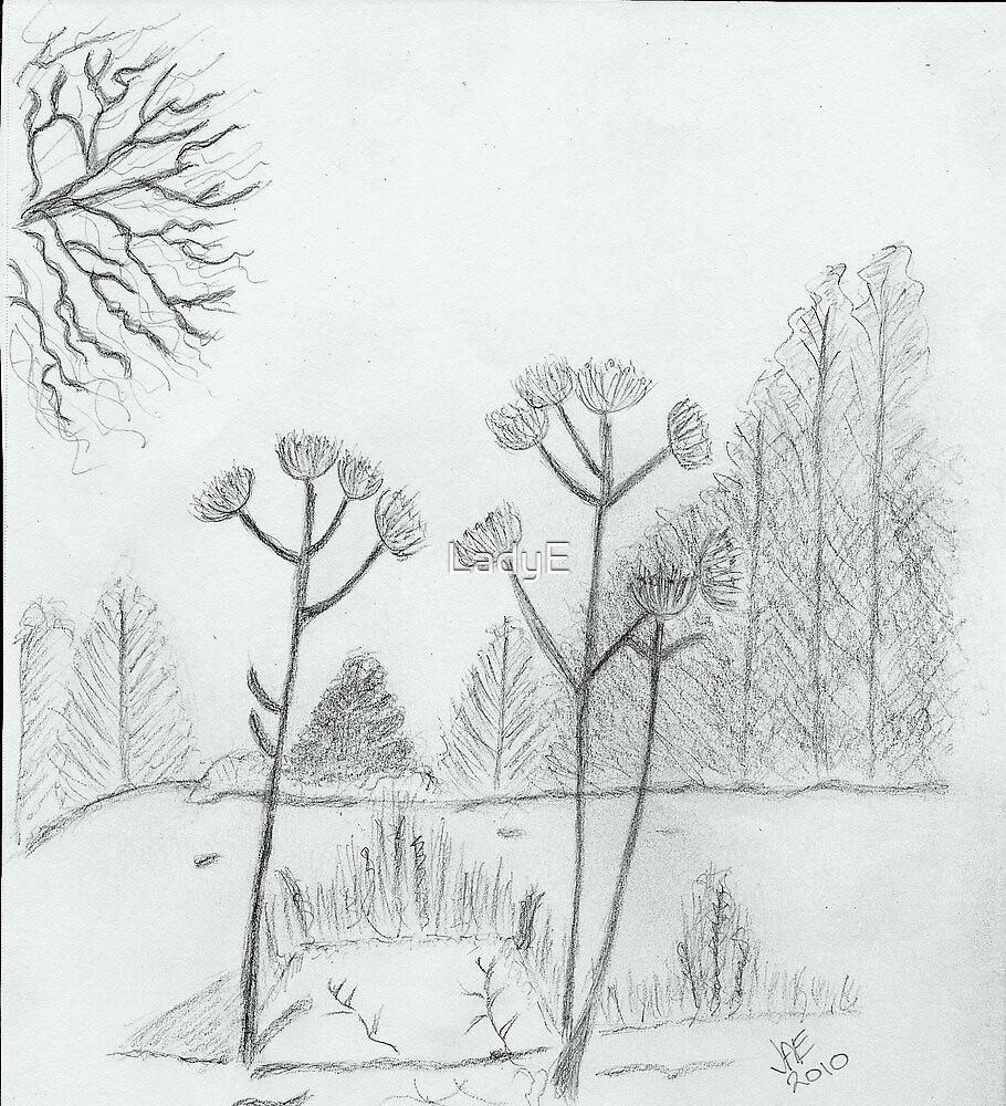 Winter scene  by LadyE