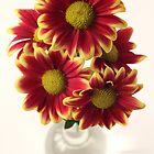 chrysanthems by OldaSimek