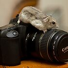 I love my Canon by Ray Clarke