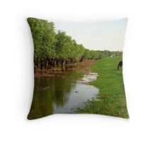 picknik time in the wild... Throw Pillow