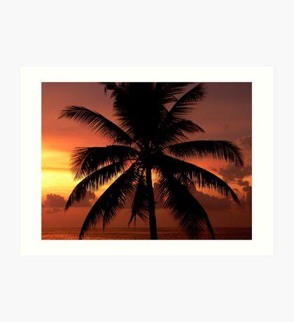 Hikkaduwa Palm Tree (Sri Lanka) Art Print