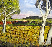 Outback Gum Trees  by gillsart
