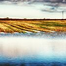 Flooded Field HDR by Vicki Field