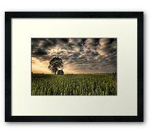 A Good Harvest Framed Print