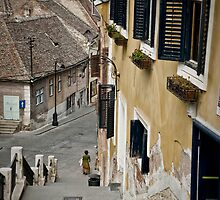 Sibiu from Behind by RonSparks