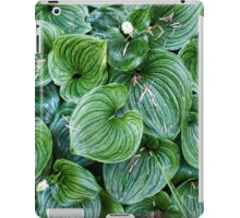 False Lily of the Valley iPad Case/Skin