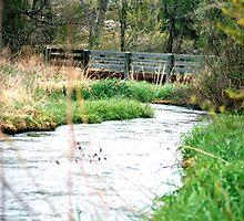 Bridge on Fountain Creek by johntbell