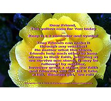 Yellow is for friendship; All Rights Reserved Lei Hedger Photography Photographic Print