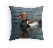 Red Crested Pochard Throw Pillow