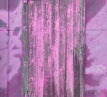 the door to the paint shed * by DAdeSimone