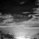 Waterfront Sunset 2 by Lenny La Rue, IPA