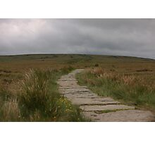 The Path To Nowhere! Photographic Print