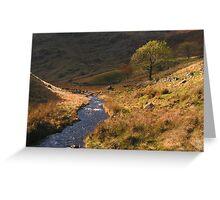 Lakeland Stream - Cumbria Greeting Card
