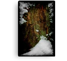 Snow Stump_1 Canvas Print