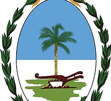 Coat of Arms of Chaco Province by abbeyz71