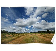 Big Surrey Skies Poster
