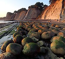 Bowling Ball Beach, Point Arena by usafan