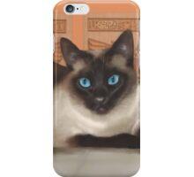 Coco the regal Siamese iPhone Case/Skin