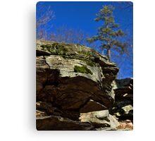 Rock Cropping & Pine Tree Canvas Print