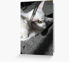 Mia (1) Greeting Card