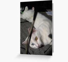 Mia (4) Greeting Card
