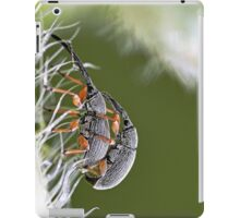 Insect 1  (c) (t) by Olao-Olavia / Okaio Créations  by fz 1000 2015 iPad Case/Skin