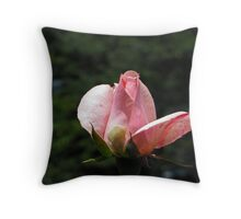 The Unveiling Throw Pillow