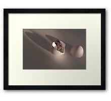 590 Framed Print