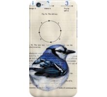 Blue Jay Circle 123 iPhone Case/Skin