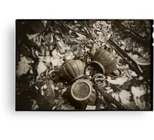 The Remains Canvas Print
