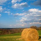 Hay on a Hill by Kent Nickell