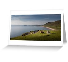 Sheep at Rhossili bay Greeting Card