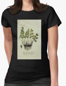 Plantarum Indigenarum et Exoticarum - Lukas Hochenleitter und Kompagnie 1788 - 364 Womens Fitted T-Shirt
