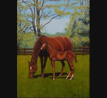 Mare and Foal Hoodie
