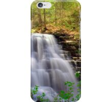 Spring Blossoms Grace Erie Falls iPhone Case/Skin