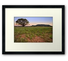 Lonesome Willow Tree Framed Print