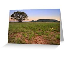 Lonesome Willow Tree Greeting Card