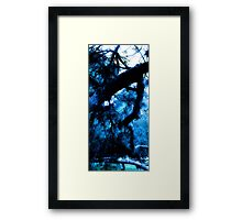Haunted Landscape/Mindscape – Abstracted Gnarled Branches and Trees in Blue – February 4, 2010 Framed Print