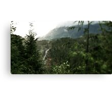 Forest valley road Canvas Print