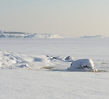 Snow covered coast by Johan Hagelin