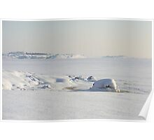 Snow covered coast Poster