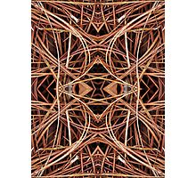 Pine Straw Kaleidoscope Photographic Print