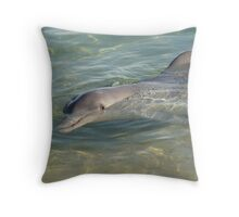 Dolphin at Monkey Mia Throw Pillow