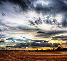 Sunset over wheat fields by Vicki Field