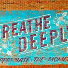 RelaX !   Breathe Deeply ! Appreciate The Moment  by Jonathan  Green