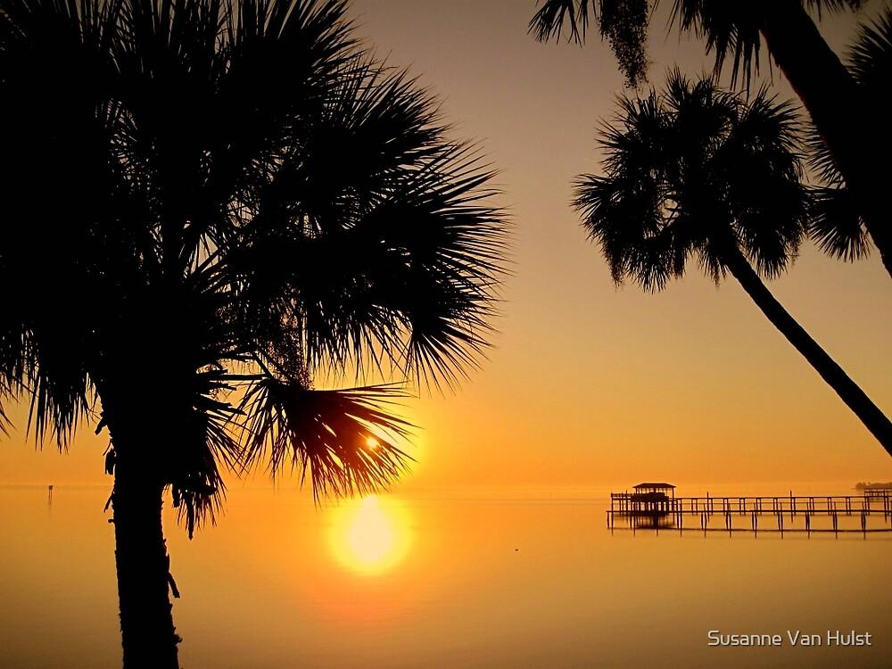 Florida Sunrise by Susanne Van Hulst