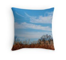 Field of Cat Tails Throw Pillow